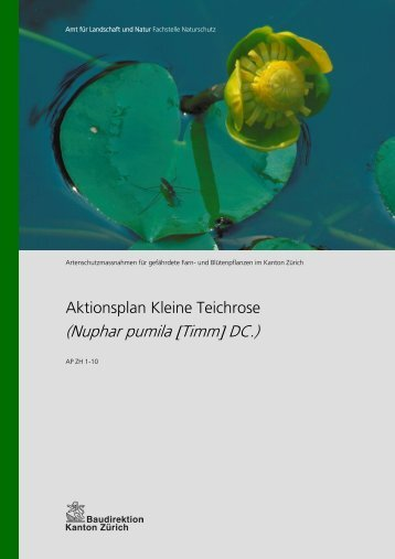 (Nuphar pumila [Timm] DC.) - Amt für Landschaft und Natur - Kanton ...