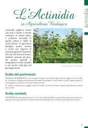 Actinidia in Agricoltura Biologica - Tec.bio