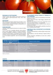 Download foglio informativo