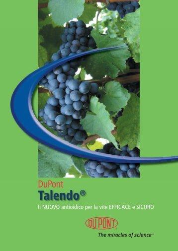 Dupont Talendo brochure 2008.indd