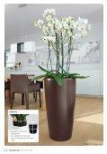 La miglior casa per le vostre piante - lechuza - Page 4