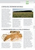 MEDICINA DI SANA PIANTA - Indena - Page 5