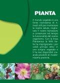 PIANTA AMICA - Witt Italia - Page 2