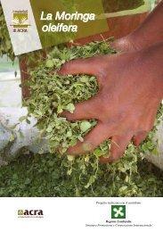 La Moringa oleifera - Agrobiodiversità: culture e sviluppo locale