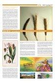 Highlights 2005 - Hanfjournal - Seite 5