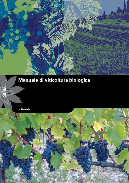Ha Fiori Gialli A Grappolo Iper.Manuale Di Viticoltura Biologica Stazione Sperimentale Per La