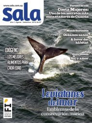 Revista Sala Nro. 07 Agosto - Setiembre