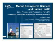 Marine Ecosystems Services and Human Health