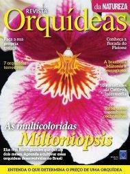 Orquídeas_Da_Natureza_Nº_16