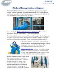Windows Cleaning Services in Singapore