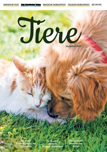 Tiere pets -04.09.18-