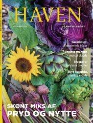 Haven_09_2018_Ipaper