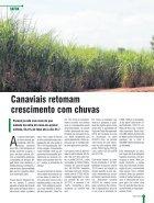 Jornal Paraná Setembro 2018 - Page 3