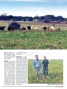 Jornal Cocamar Setembro 2018 - Page 5