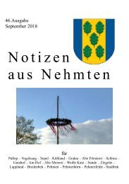46_NaNAusgabe.pdf