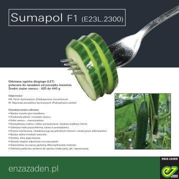 Leaflet_Sumapol