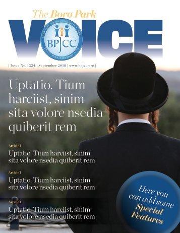 The Boro Park Magazine