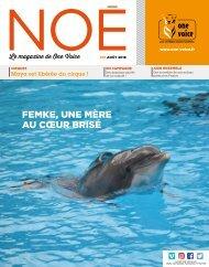 Noé 91