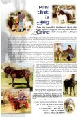 A Complimentary Newsletter F A Complimentary ... - Horse Times - Page 5