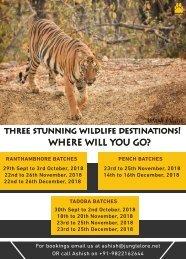 Safaris 2018