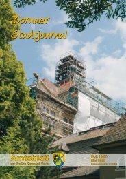 Amtsblatt der Großen Kreisstadt Borna 10/09 - Druckhaus Borna
