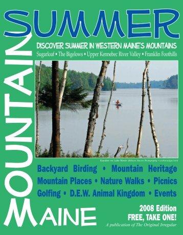 Mountain Summer 2008 - The Irregular