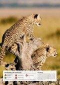 Östliches Afrika & Kongo 2018/19 - Schweizer Preise - Page 4