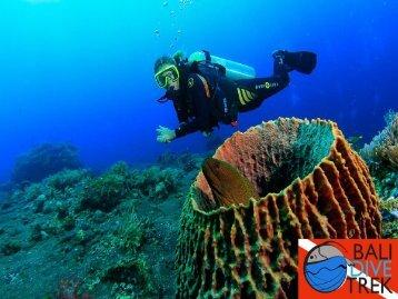 Advanced Scuba Diving Course