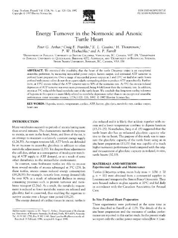 Energy Turnover in the Normoxic and Anoxic - University of British ...