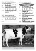Instyle Holsteins Complete Dispersal On-Farm - Page 7