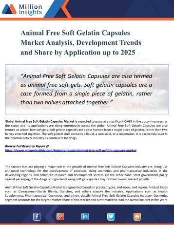 Animal Free Soft Gelatin Capsules Market Manufacturers, Suppliers and Top Key Players Analysis and Forecast 2025