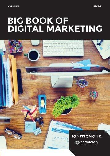 Netmining-Marketing-Big-Book