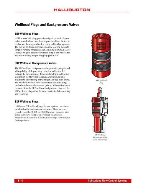 Wellhead Plugs and Backpr