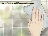 How to Remove Mold from your Restroom