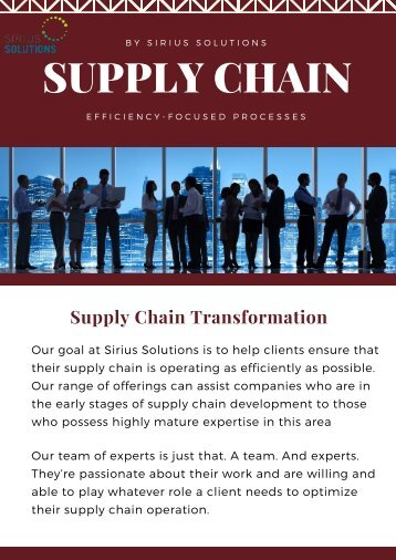 Expertise in Supply Chain Management   Sirius Solutions