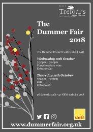 Dummer Fair 2018 Invitation