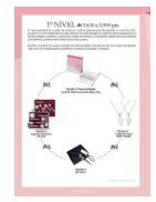 jornal de unidade_ pink stars_setembro - Page 5