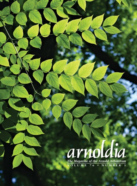 Arnoldia Article full with cover Sept 2018
