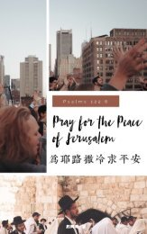 為耶路撒冷求平安