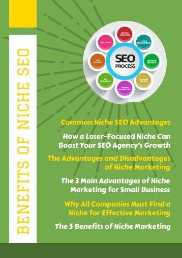 Benefits of Niche SEO