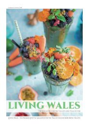 Living Wales Summer 2018 (web)