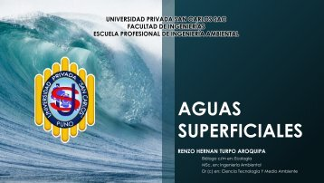 1. AGUAS SUPERFICIALES I (1)