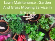 Lawn Maintenance, Garden And Grass Mowing Service In Brisbane