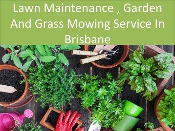 Lawn Maintenance, Garden And Grass Mowing Service In Brisbane