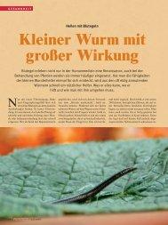 Kleiner Wurm mit großer Wirkung - Reiter Revue International