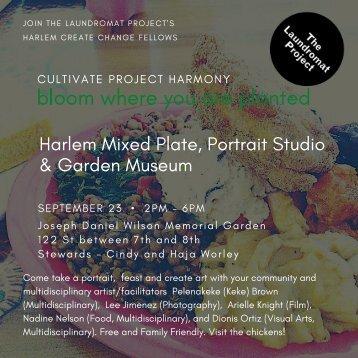 Harlem Mixed Plate
