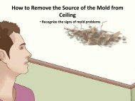 How to Remove the Source of the Mold from Ceiling