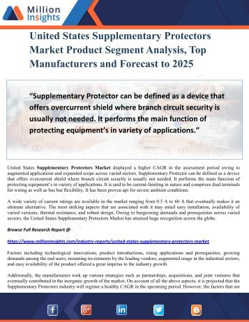 United States Supplementary Protectors Market Product Segment Analysis, Top Manufacturers and Forecast to 2025