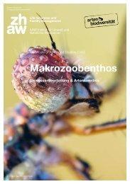 Studienbroschüre CAS Makrozoobenthos – Gewässerbeurteilung & Artenkenntnis