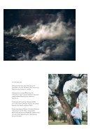 132_b1_06_18_Olivenbaeume - Page 2